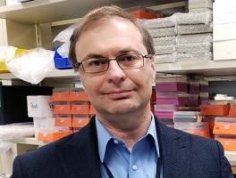 Mircea Ivan, M.D., Ph.D.